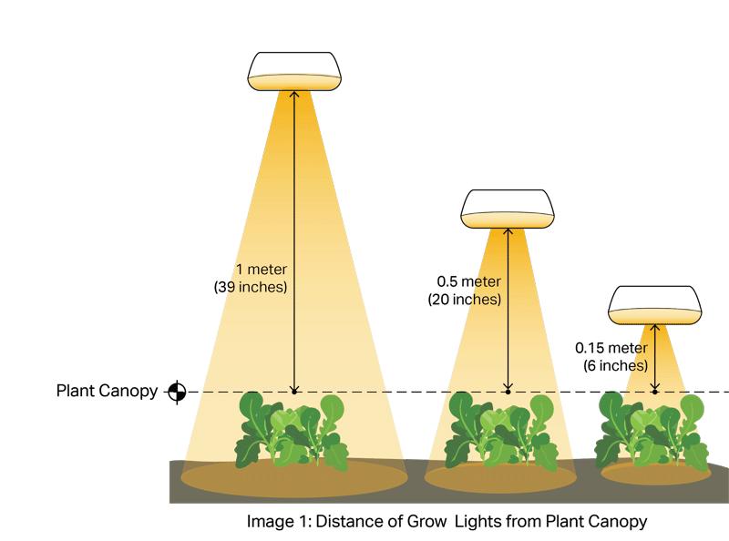 Bios Light Distance Chart of 600W LED Grow Light
